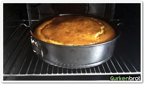 American Cheesecake_Kuchen